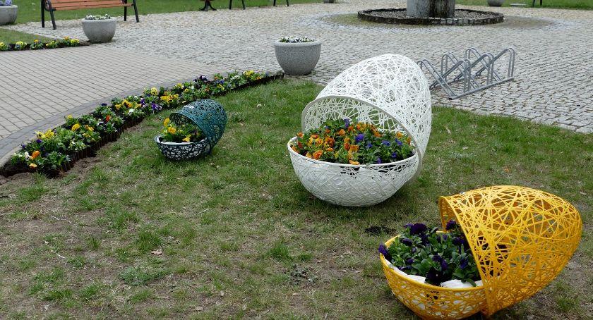 Samorządowcy, Wielkanocne trawnikach skwerach - zdjęcie, fotografia