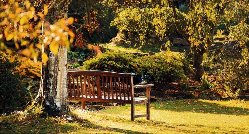 Rekreacja wypoczynek, Jaką ławkę ogrodową wybrać Podpowiadamy warto zwrócić uwagę zakupie - zdjęcie, fotografia
