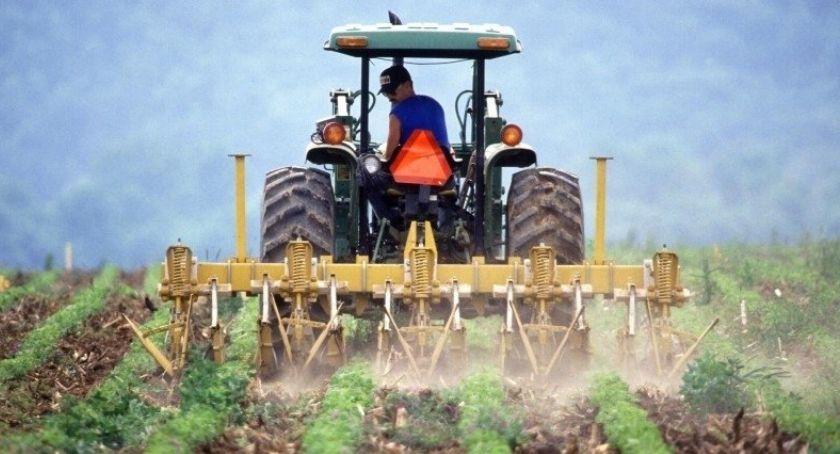 Rolnictwo, Podatek rolny maksa - zdjęcie, fotografia
