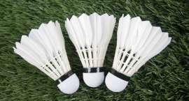 Wakacyjny badminton