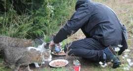 Adoptowali kota aż w Berlinie
