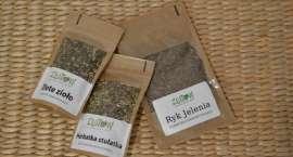 Złote zioło - trzecią złotowską herbatką