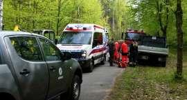 Dzięki błyskawicznej akcji pracowników Nadleśnictwa Lipka i strażaków z OSP Lipka uratowano życie mę