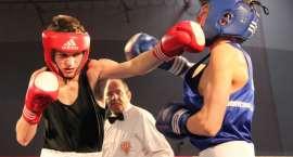Złotowianie lubią boks!