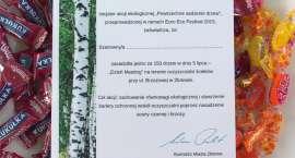 Powszechne sadzenie drzew - EEF dzień ostatni