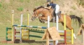 Zawody jeździeckie w skokach przez przeszkody w Luchowie