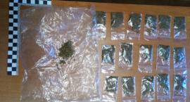 Kryminalni w Jastrowiu zabezpieczyli ponad 200 porcji marihuany