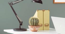 Oświetlenie w biurze – przewodnik