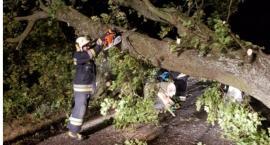 Strażacy walczyli ze skutkami silnych wiatrów w powiecie