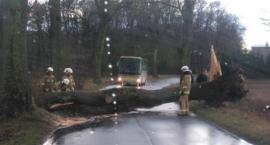Strażacy usuwali skutki wichury