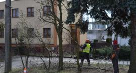 Wiosenne porządki w gminie Krajenka