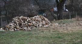 Interwencja w sprawie drewna