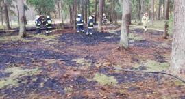 Pożar w lesie – zgłoszenie mieszkańca i szybka interwencja strażaków
