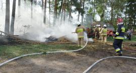 Pożar słomy i poszycia leśnego