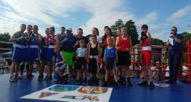 Walki bokserskie podczas CIS 2019
