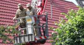 Desperat grozi wysadzeniem budynku w Jastrowiu