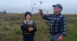 Mieszkańcy Starej Wiśniewki posadzili drzewka