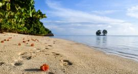 Szukasz pomysłu na urlop? Wybierz Seszele!
