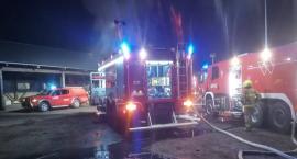 Strażacy z kilku jednostek walczyli z pożarem