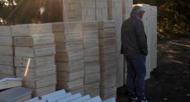 Ochrona i odbudowa populacji pszczół na terenie powiatu złotowskiego