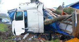 Ciężarówka uderzyła w drzewo