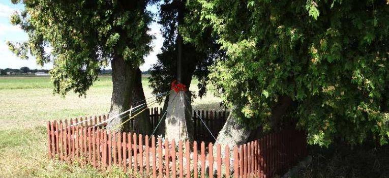 Publikacje, Miejsca pamięci Mazury cmentarz - zdjęcie, fotografia