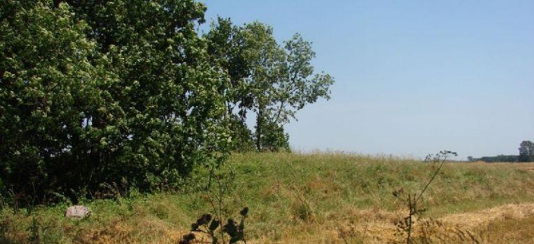 Bunkry i fortyfikacje, Cmentarz Wojny Światowej Haćki - zdjęcie, fotografia