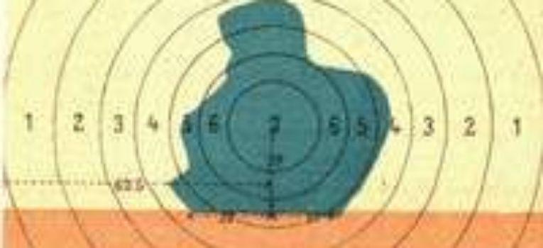 Broń palna, Regimentowe Zawody Strzeleckie Broni Historycznej - zdjęcie, fotografia