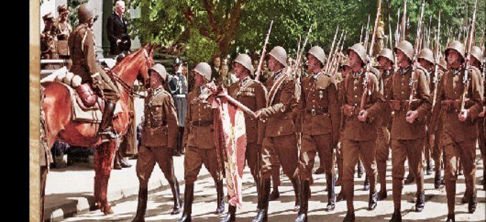 Kolekcje, Dywizja Piechoty Legionów Wielka Księga Piechoty Polskiej - zdjęcie, fotografia