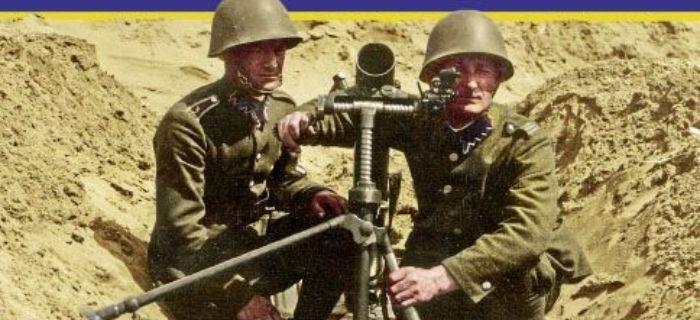 Kolekcje, Dywizja Piechoty Legionów - zdjęcie, fotografia