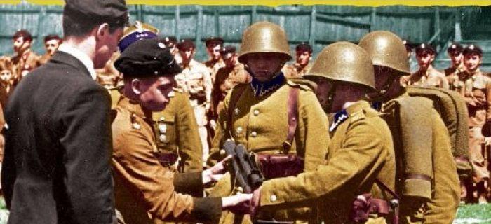 Kolekcje, Dywizja Piechoty - zdjęcie, fotografia