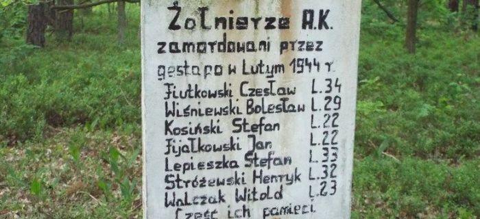 Identyfikacje historyczne, Mogiła rozstrzelanych żołnierzy Bolimowskim Parku Krajobrazowym - zdjęcie, fotografia