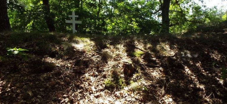 Identyfikacje historyczne, cmentarz carski Kamionie koło Skierniewic - zdjęcie, fotografia