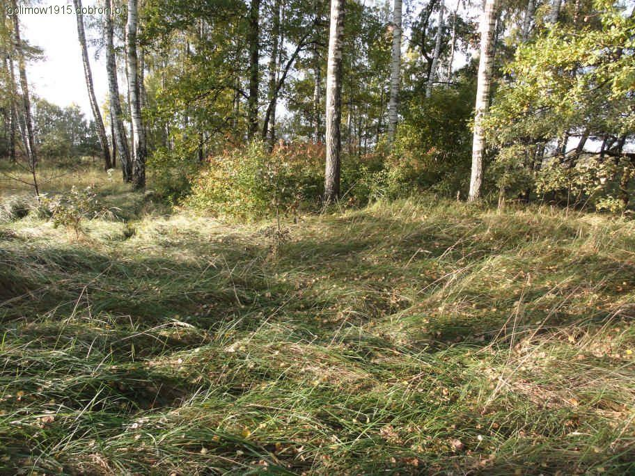 Relacje z odkryć, Wężyki cmentarz wojenny Wojna Światowa - zdjęcie, fotografia