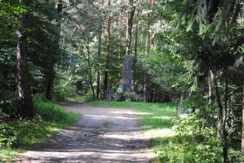Identyfikacje historyczne, Pomnik powstania Joachimowie Mogiłach - zdjęcie, fotografia
