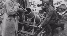 225 mm moździerz wz.1915