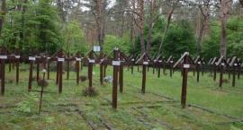 Cmentarz z I wojny światowej w Świerżach Górnych