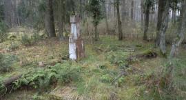 Piwnice Wielkie - cmentarz I wojny światowej