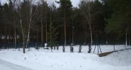 Piasecznia - cmentarz wojskowy.