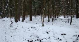 Suche - cmentarz I wojna światowa