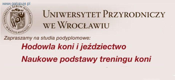 Media jeździeckie, Zostań studentem podyplomowym Uniwersytetu Przyrodniczego Wrocławiu - zdjęcie, fotografia