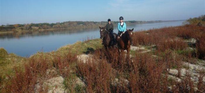 Ośrodki jeździeckie, Stajnia Dorado Puszcza Kampinoska - zdjęcie, fotografia