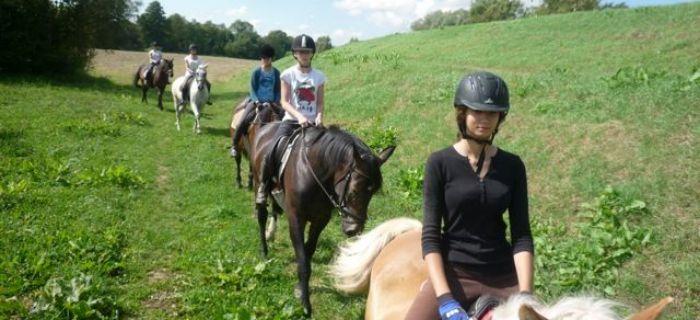 Targi i wystawy jeździeckie, calodniowy konny puszczy Kampinoskiej - zdjęcie, fotografia
