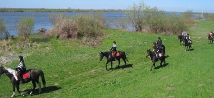 Obozy jeździeckie, Majówka siodle - zdjęcie, fotografia