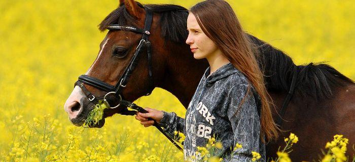 Media jeździeckie, Młoda Mistrzyni koniach jeździeckim bezpieczeństwie - zdjęcie, fotografia