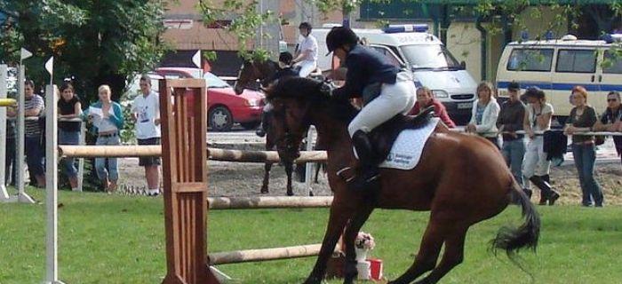 Jazda konna, Bezpiecznym koniach Część zawodach - zdjęcie, fotografia