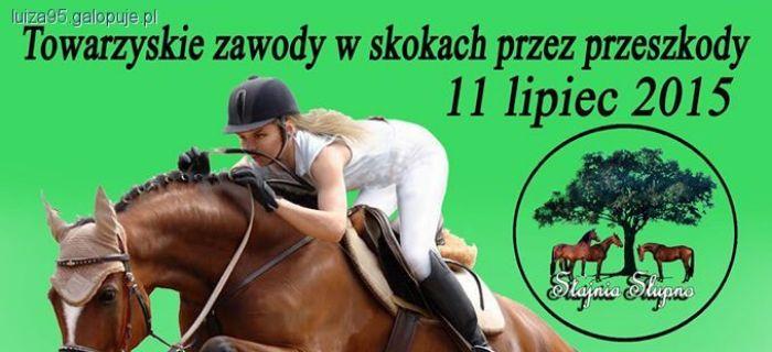 Zawody jeździeckie, Towarzyskie zawody skokach przez przeszkody - zdjęcie, fotografia