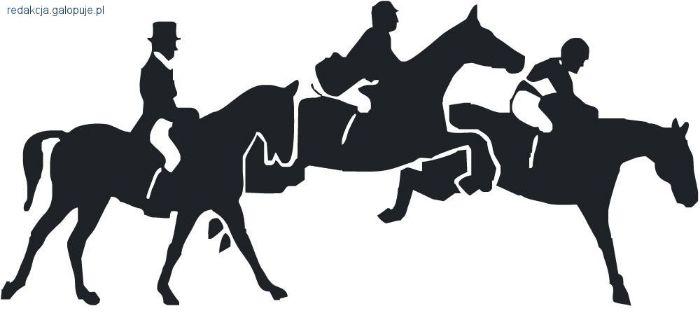 Zawody jeździeckie, Zawody - zdjęcie, fotografia