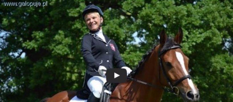 Imprezy jeździeckie, Kupujemy konia Magdy Cycak - zdjęcie, fotografia