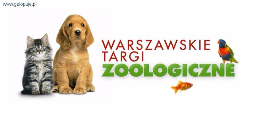 Biznes jeździecki, Warszawskie Targi Zoologiczne - zdjęcie, fotografia